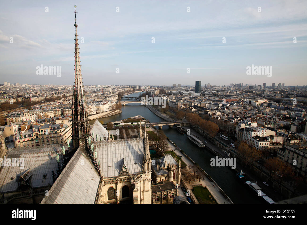 View from Notre Dame Cathedral roof, Paris, France, EuropeStock Photo