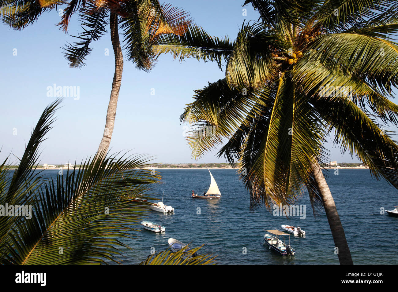 View from the Peponi hotel, Shela, Lamu Island, Kenya, East Africa, Indian Ocean, Africa Stock Photo