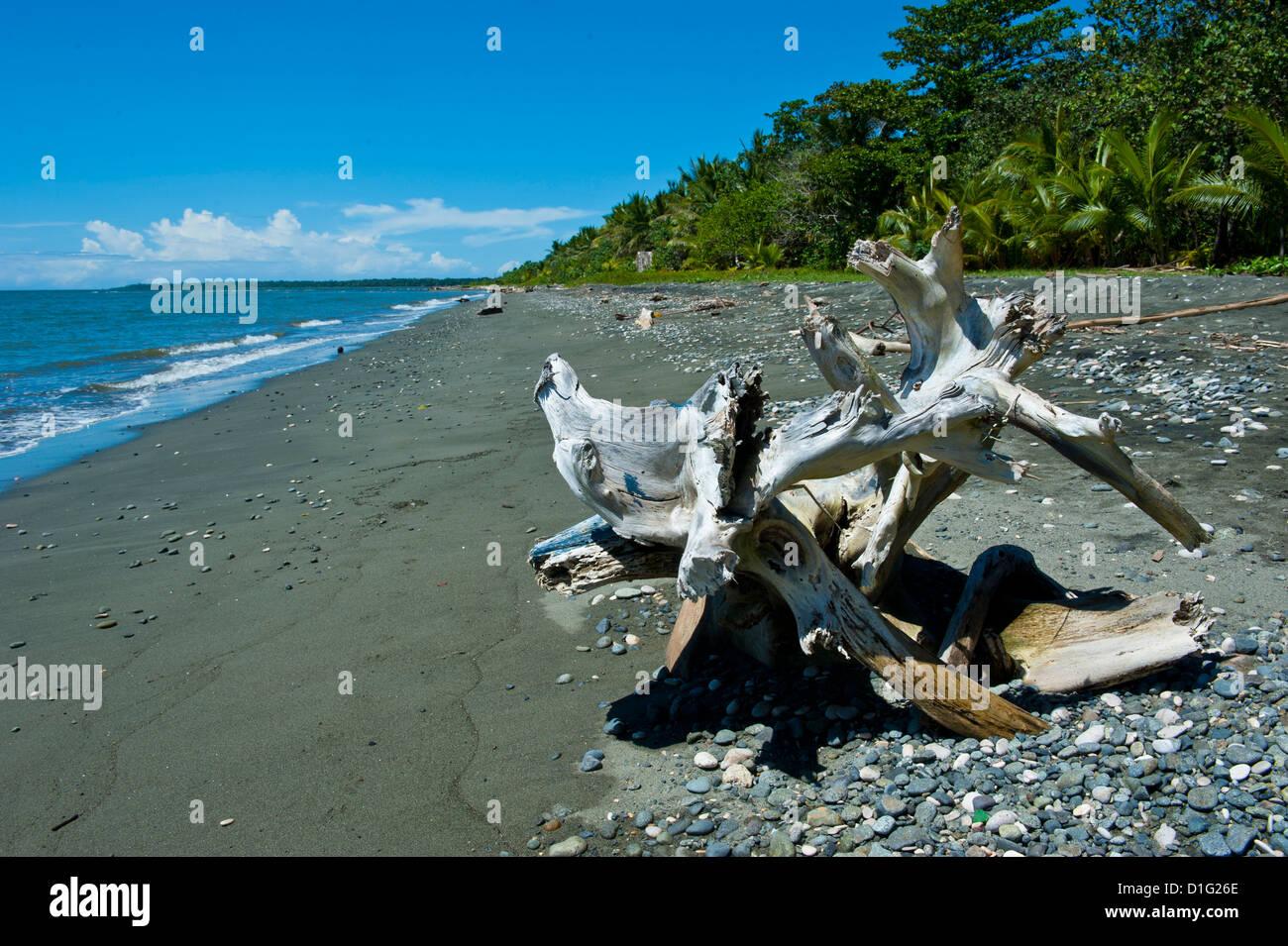 Beach at Savo Island, Savo, Solomon Islands, Pacific - Stock Image