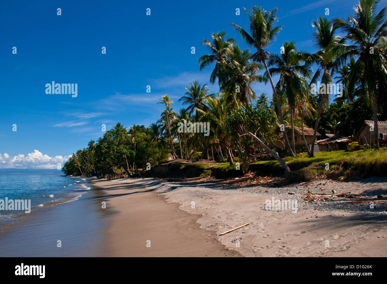 Tropical beach, Solomon Islands, Pacific - Stock Image
