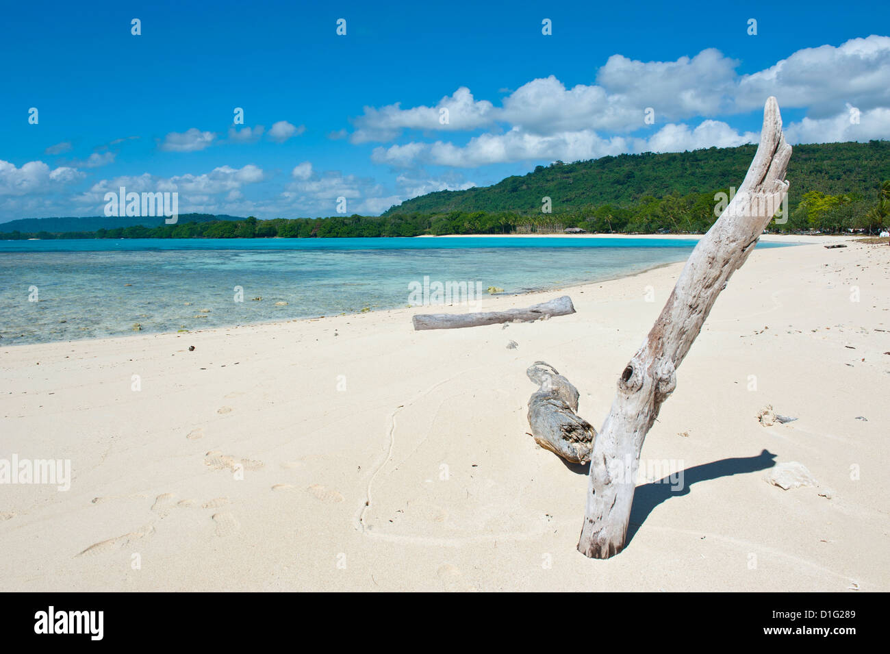 Driftwood on the white sand beach of Port Orly, Island of Espiritu Santo, Vanuatu, South Pacific, Pacific Stock Photo