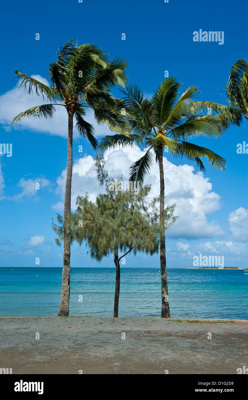 Beach in Noumea, New Caledonia, Melanesia, South Pacific, Pacific - Stock Image