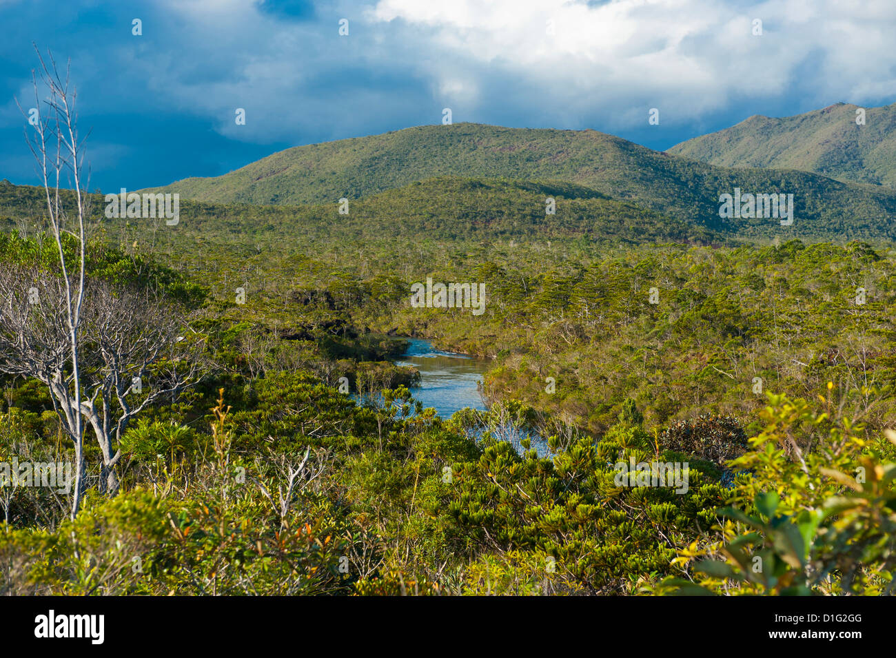 Landscape near the waterfalls Chutes de la Madeleine on the south coast of Grande Terre, New Caledonia, Melanesia, - Stock Image