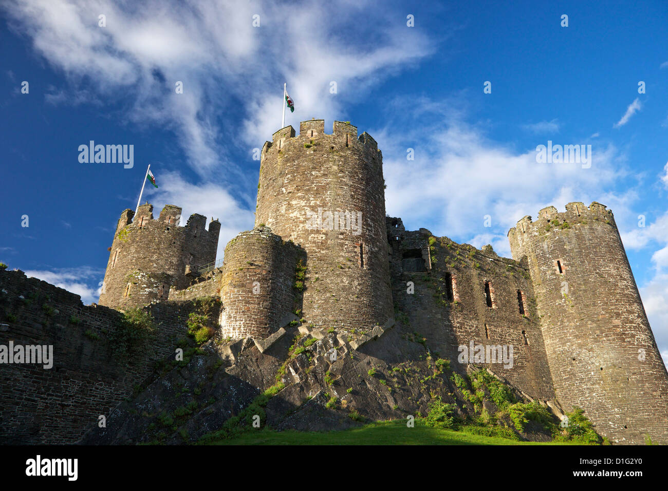 Conwy medieval castle in summer, UNESCO World Heritage Site, Gwynedd, North Wales, United Kingdom, Europe - Stock Image