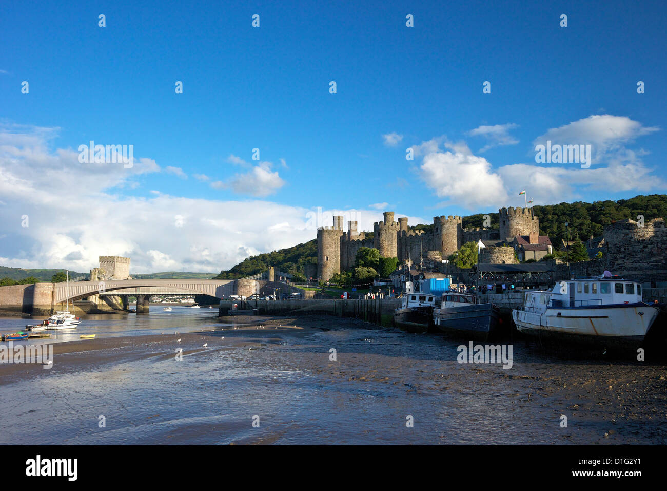 River Conwy estuary and medieval castle in summer, UNESCO World Heritage Site, Gwynedd, North Wales, United Kingdom, - Stock Image