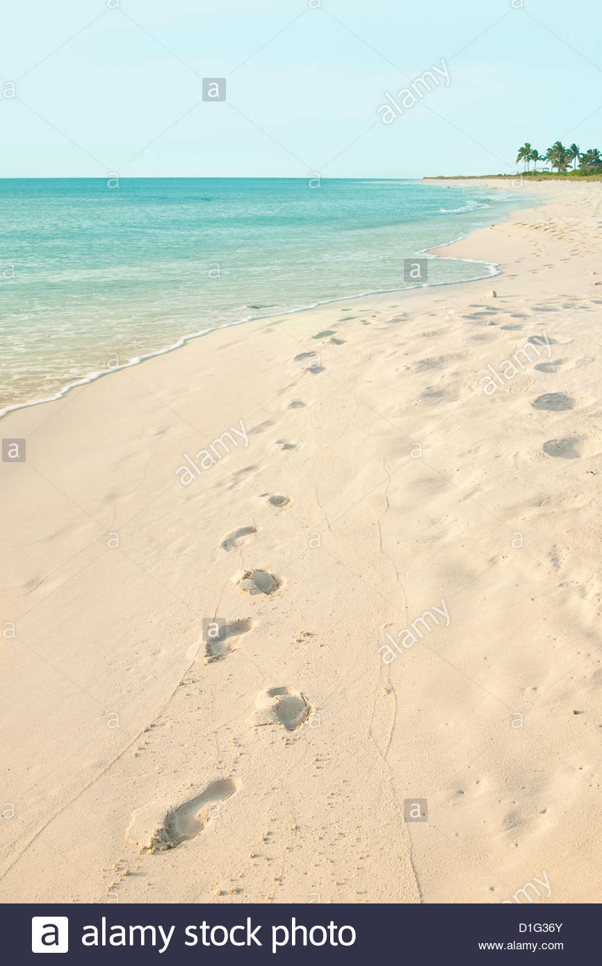 Footprints in sand at Grace Bay Beach, Providenciales, Turks and Caicos Islands, West Indies, Caribbean, Central - Stock Image