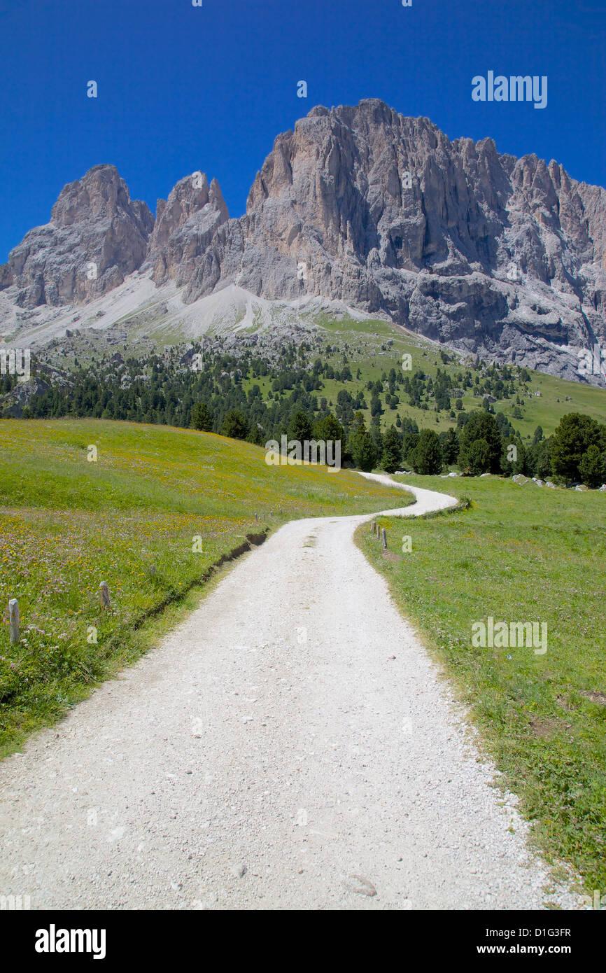 Sassolungo Group and path, Sella Pass, Trento and Bolzano Provinces, Italian Dolomites, Italy, Europe - Stock Image