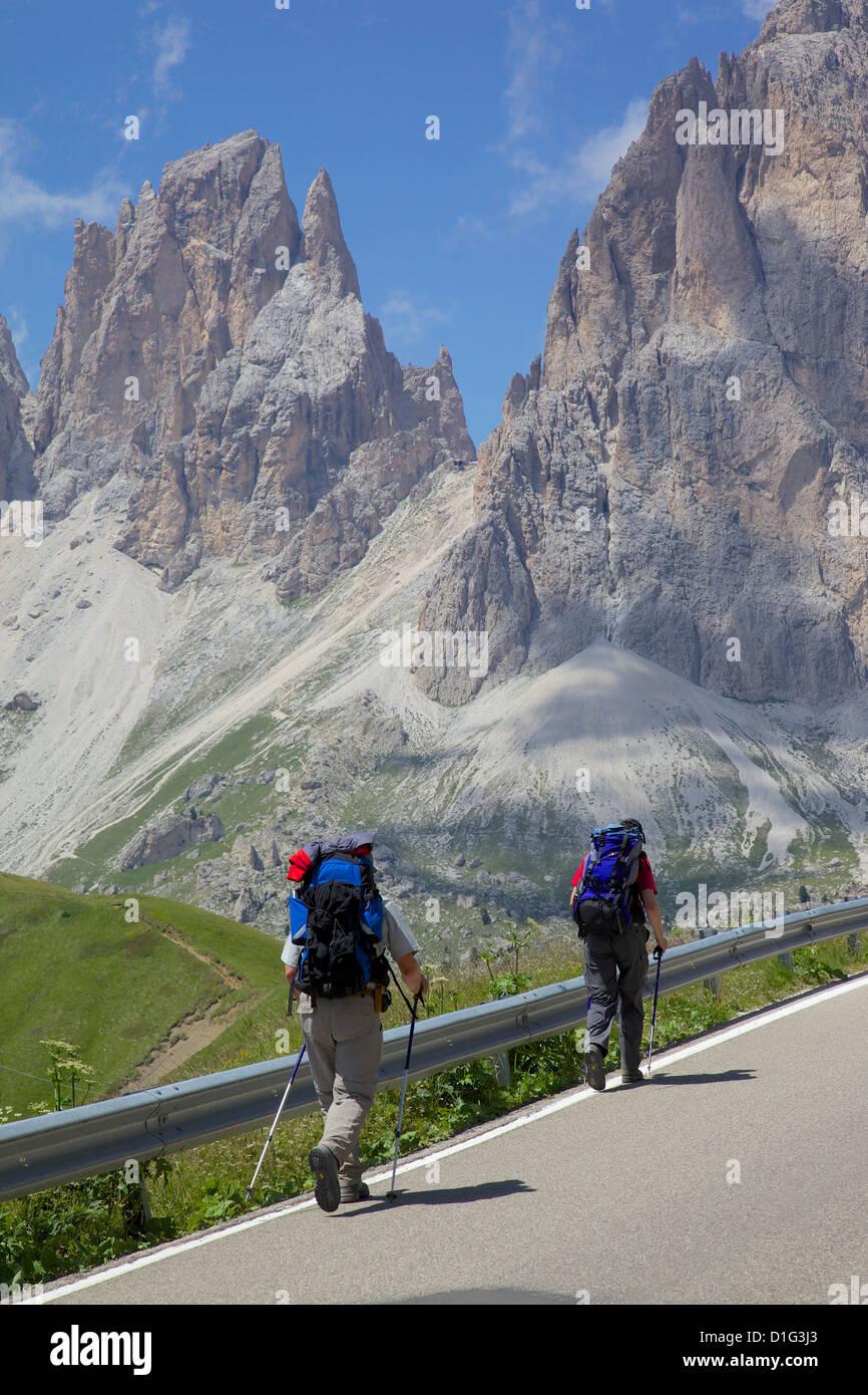 Hikers and Sassolungo Group, Sella Pass, Trento and Bolzano Provinces, Italian Dolomites, Italy, Europe - Stock Image