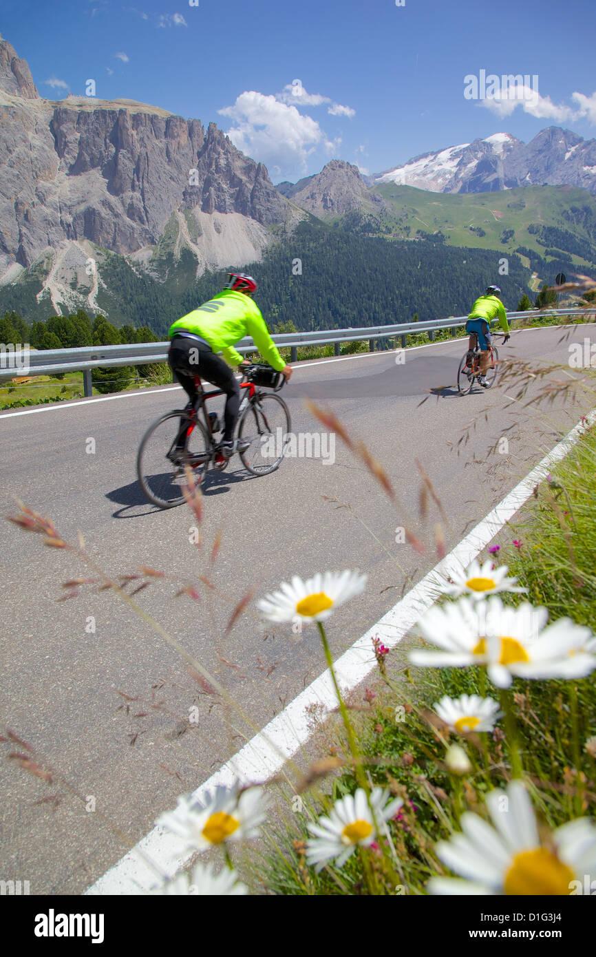 Cyclists, Sella Pass, Trento and Bolzano Provinces, Italian Dolomites, Italy, Europe - Stock Image