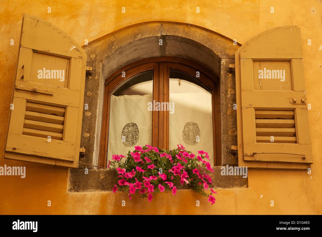 Shuttered window and flowers, Piazza Mercato, Belluno, Province of Belluno, Veneto, Italy, Europe - Stock Image