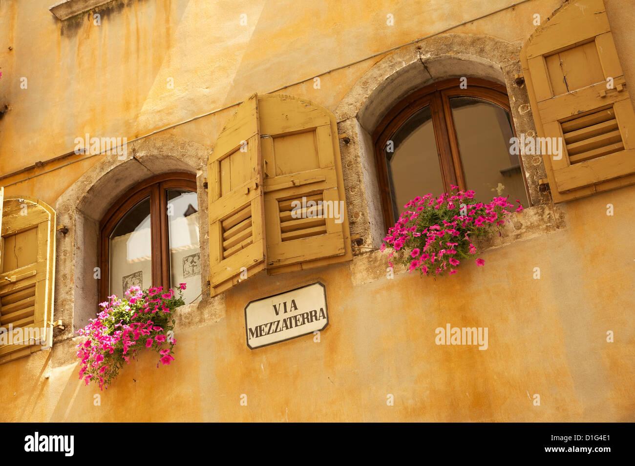 Shuttered windows and flowers, Piazza Mercato, Belluno, Province of Belluno, Veneto, Italy, Europe - Stock Image