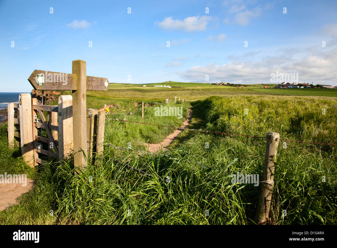 The Cleveland Way Footpath at Saltwick Bay near Whitby, North Yorkshire, Yorkshire, England, United Kingdom, Europe - Stock Image