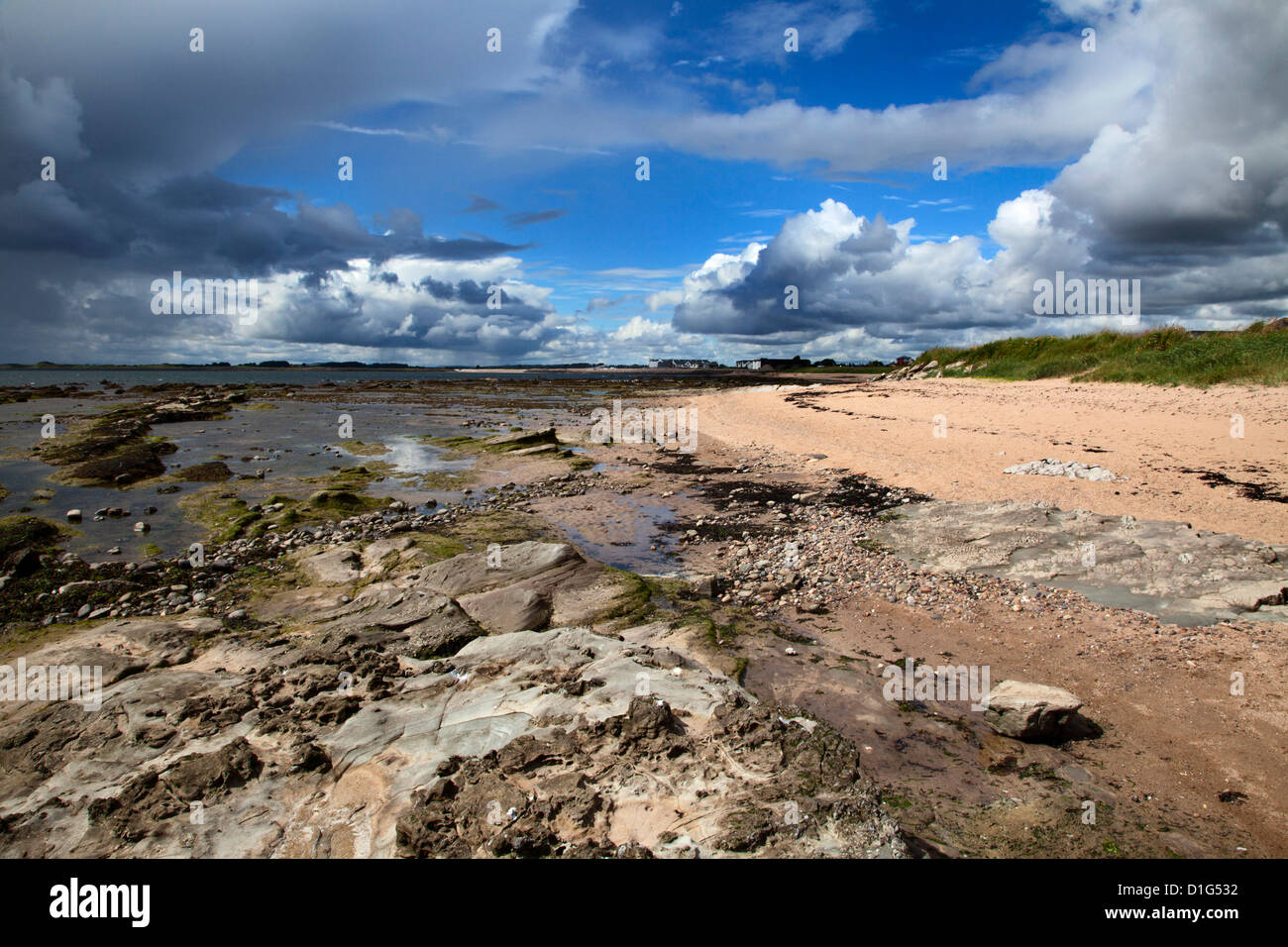 Rocks on the beach at Carnoustie, Angus, Scotland, United Kingdom, Europe - Stock Image