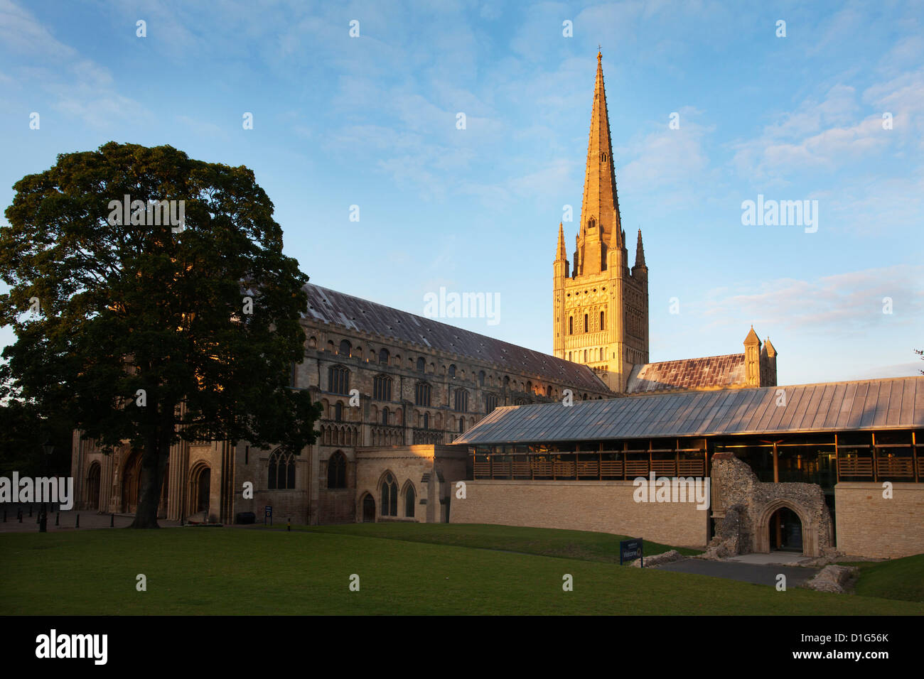 Last light on the spire at Norwich Cathedral, Norwich, Norfolk, England, United Kingdom, Europe - Stock Image