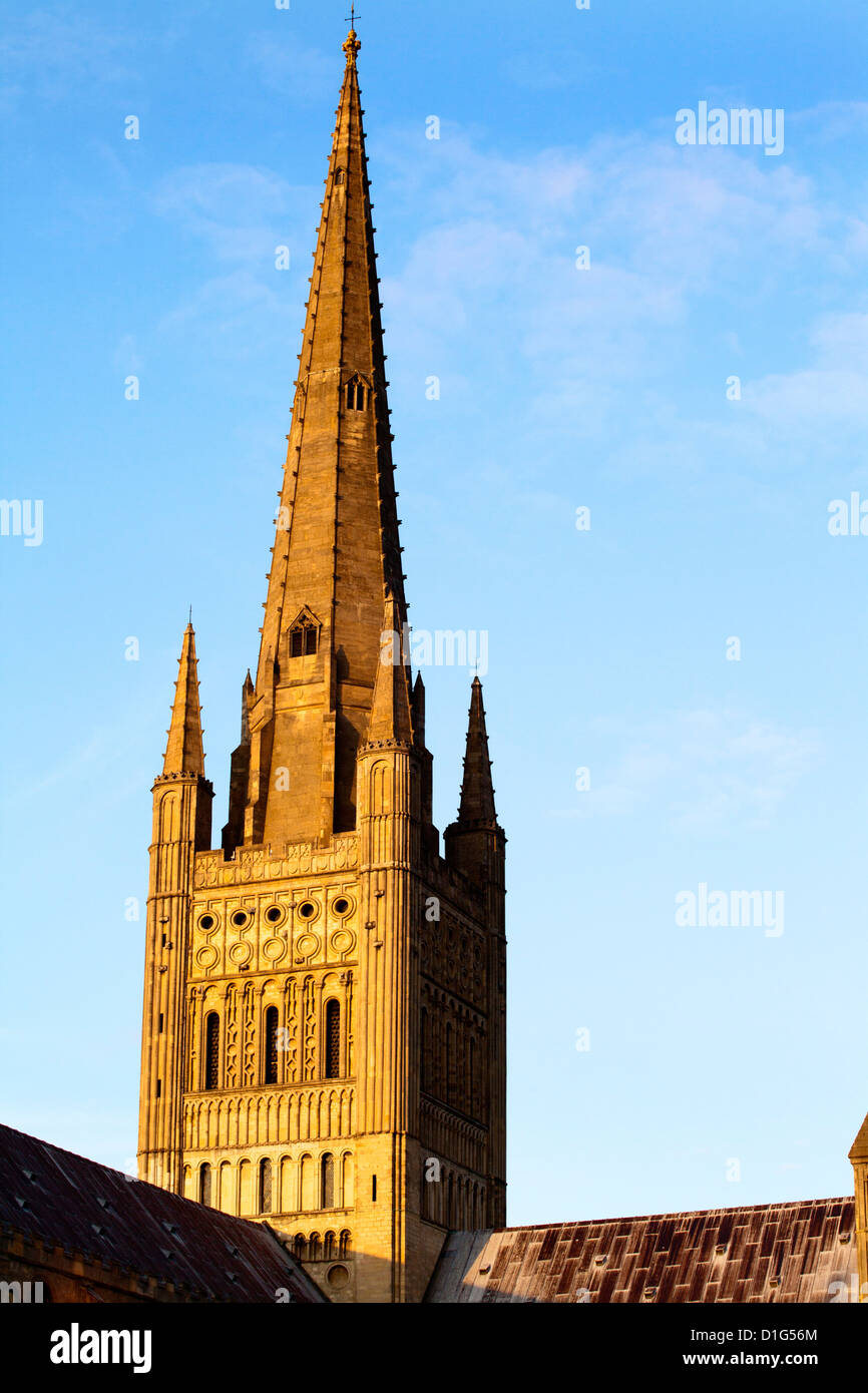 Norwich Cathedral tower and spire at sunset, Norwich, Norfolk, England, United Kingdom, Europe - Stock Image