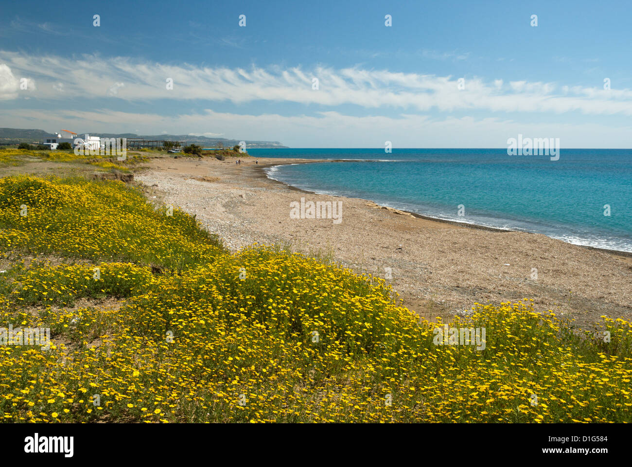 Secluded beach in spring, near Paphos, Cyprus, Mediterranean, Europe - Stock Image