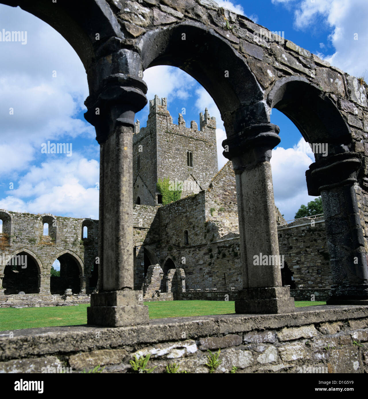 Ruins of Cistercian Jerpoint Abbey, Jerpoint, County Kilkenny, Leinster, Republic of Ireland, Europe - Stock Image