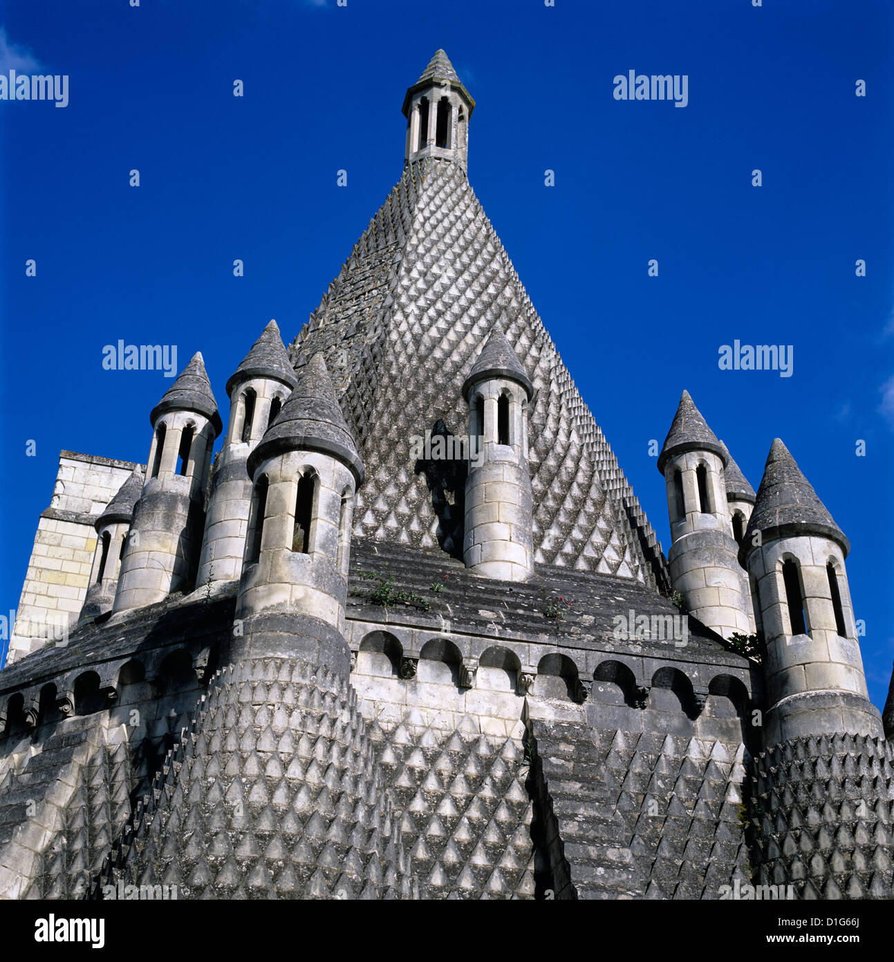 Kitchen chimneys, Fontevraud Abbey (Fontevraud-l'Abbaye), Loire Valley, Anjou, France, Europe - Stock Image