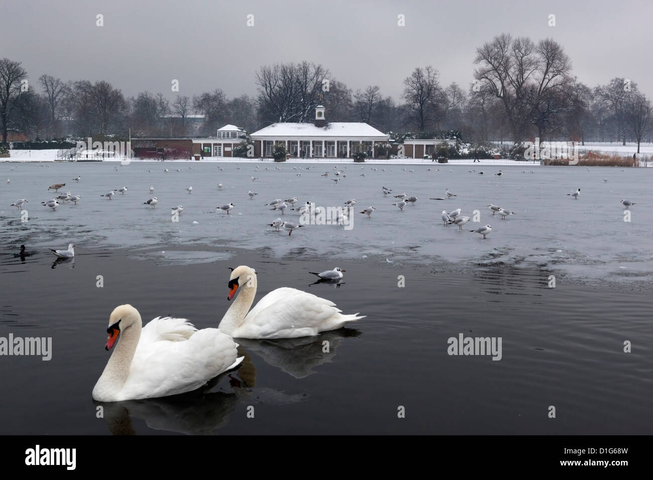 The Serpentine in winter, Hyde Park, London, England, United Kingdom, Europe - Stock Image