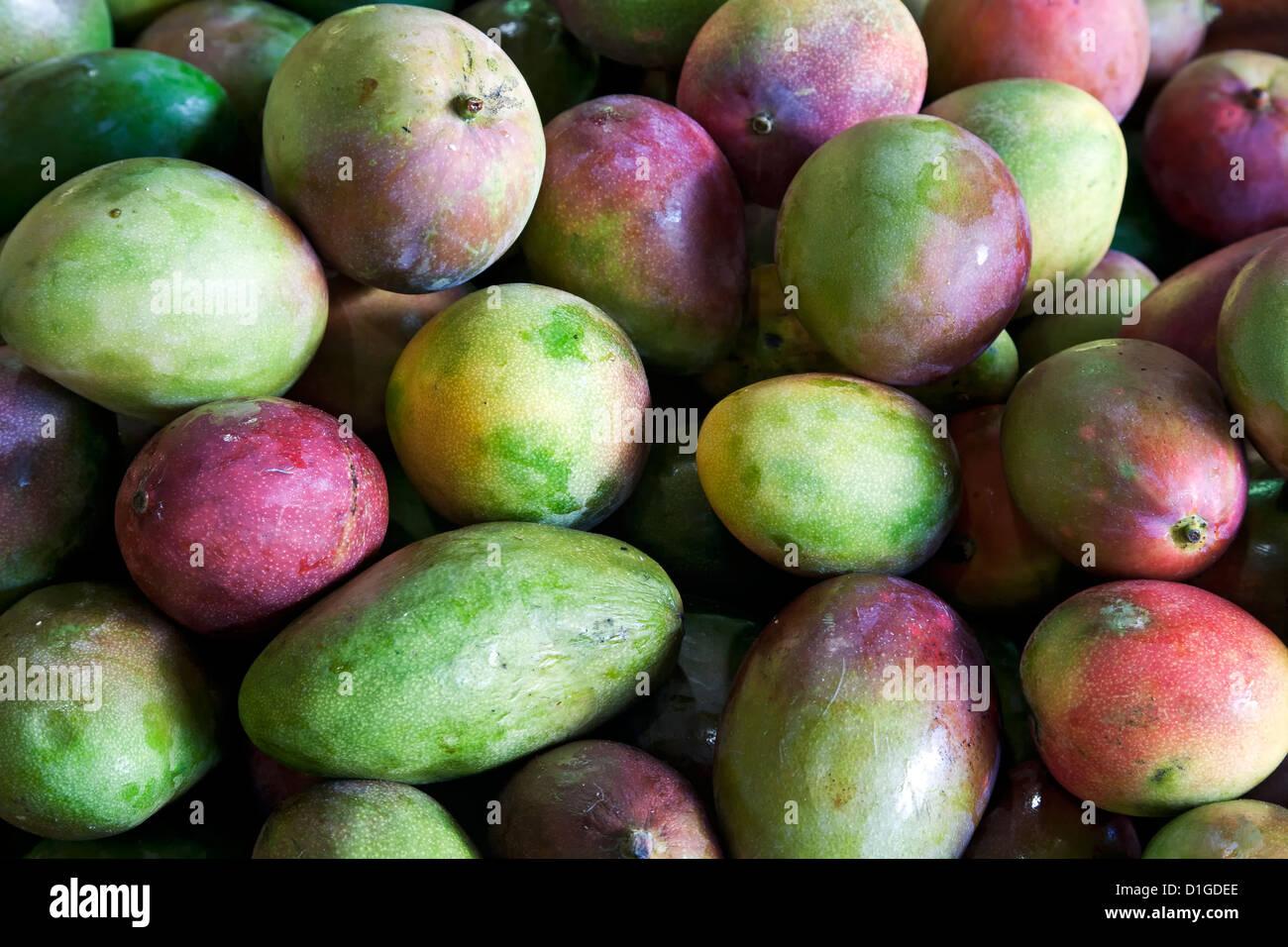 Mangoes, Plaza del Mercado, Santurce, Puerto Rico - Stock Image
