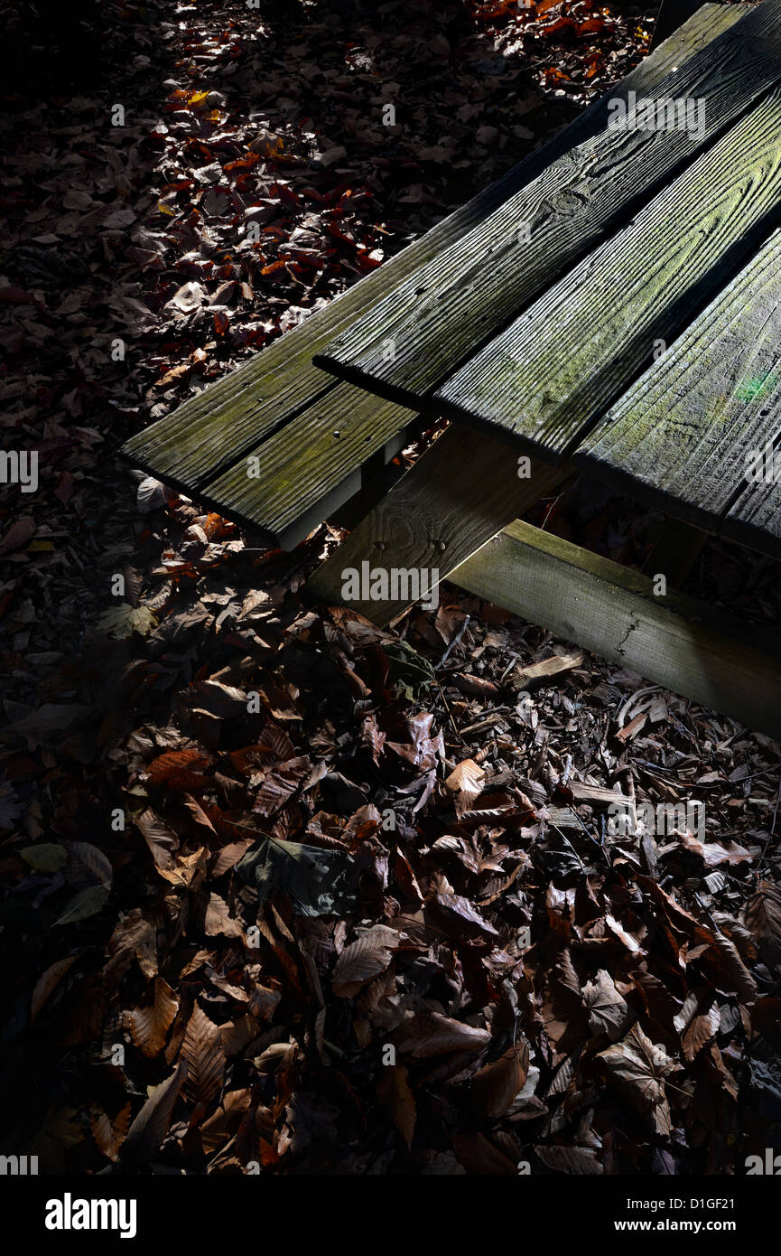 Old Wooden Picnic Table In Late Autumn - Stock Image