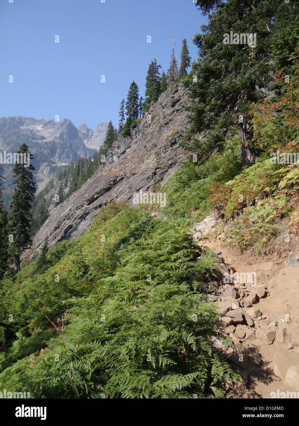 Hikers climbing steep mountain trail with switchbacks near Snoqualmie Pass, Washington  - Stock Image