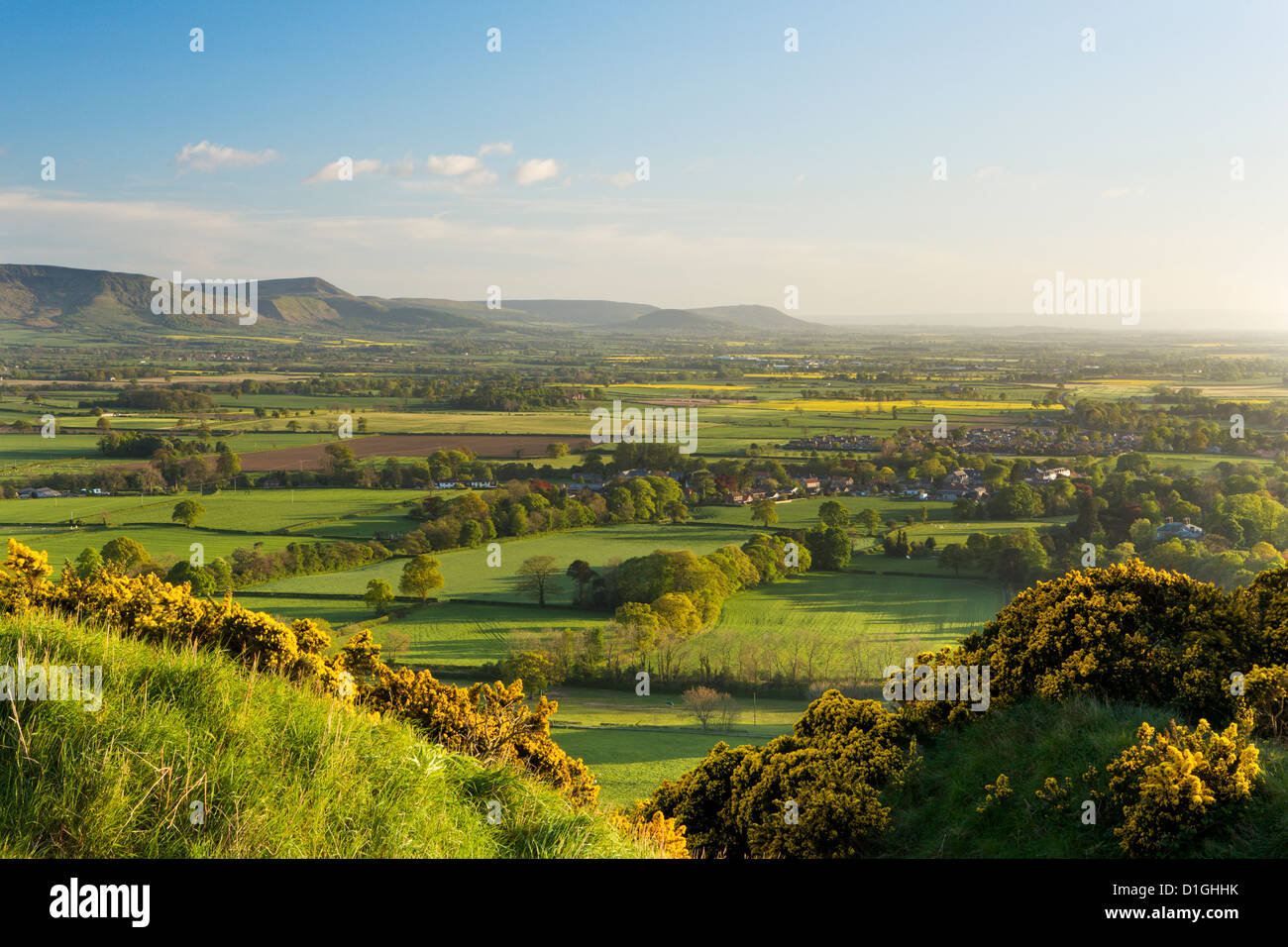 View of the Cleveland Hills from above Cliff Ridge Wood, Great Ayton, North Yorkshire, Yorkshire, England, United - Stock Image
