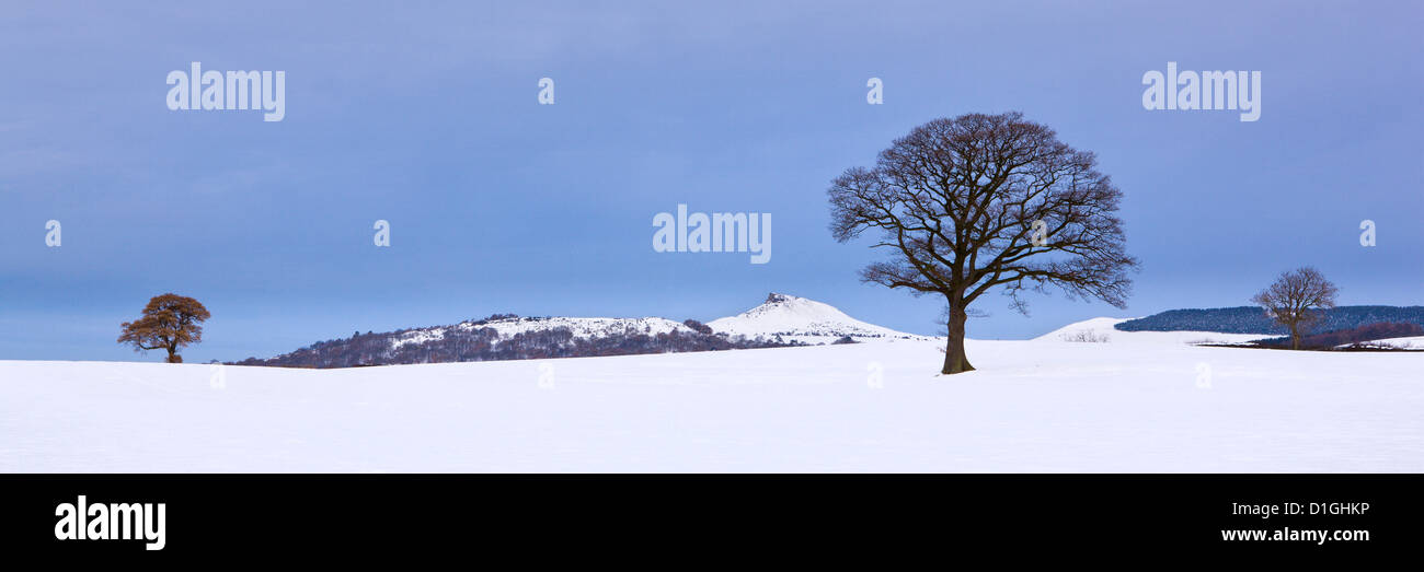 Winter trees and snow covered fields with Roseberry Topping in the distance, North Yorkshire, Yorkshire, England, - Stock Image