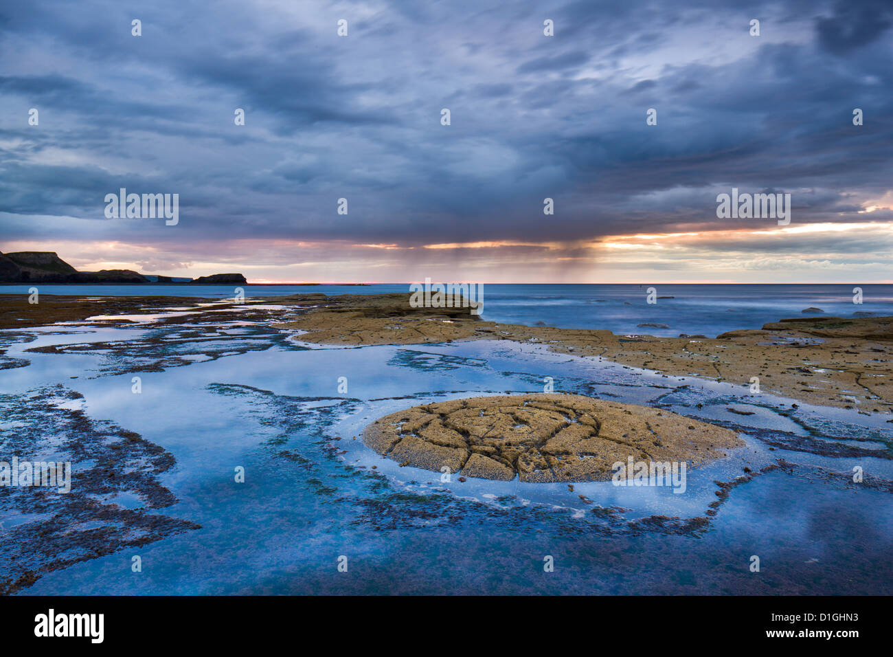 Ancient rock formations on the shale sea bed at Saltwick Bay, North Yorkshire, Yorkshire, England, United Kingdom, - Stock Image