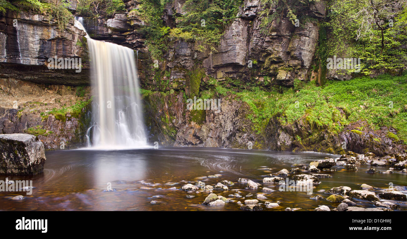 Thonton Force above Ingleton in the Yorkshire Dales, North Yorkshire, Yorkshire, England, United Kingdom, Europe - Stock Image