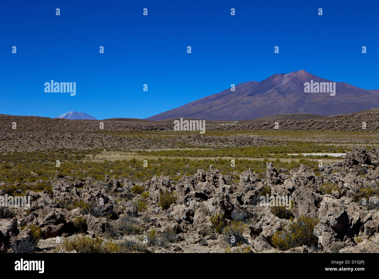 Southwest Highlands, Bolivia, South America - Stock Image