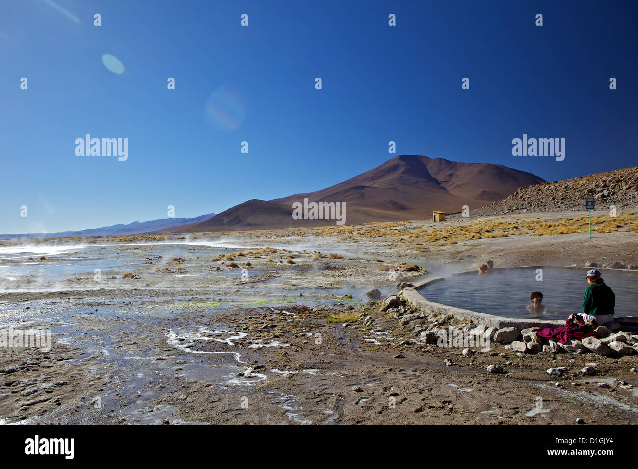 Hot springs and mud pools, Aguas Calientes, Southwest Highlands, Bolivia, South America Stock Photo
