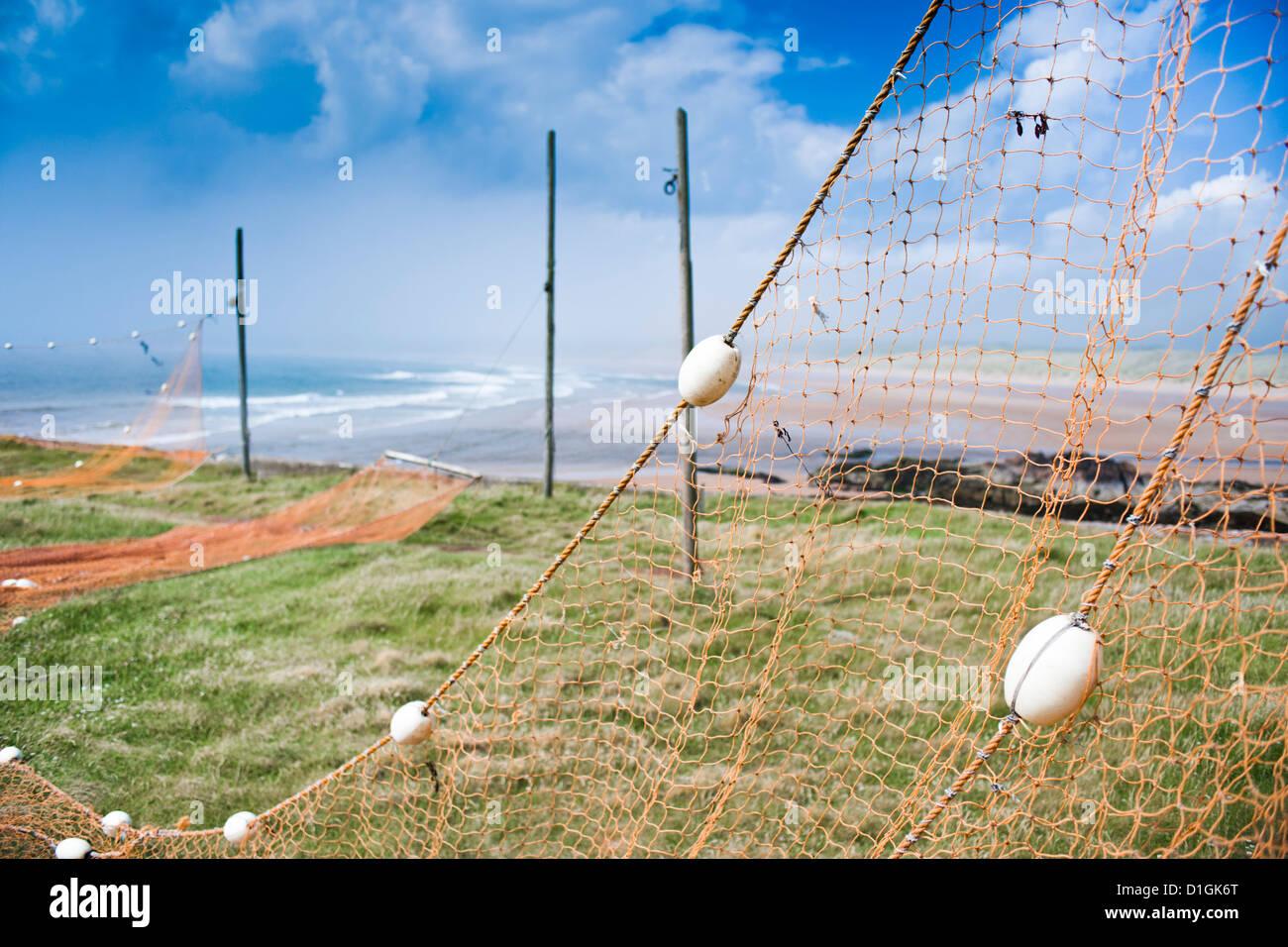 Fishing nets drying, Gourdon Bay, Scotland, United Kingdom, Europe - Stock Image