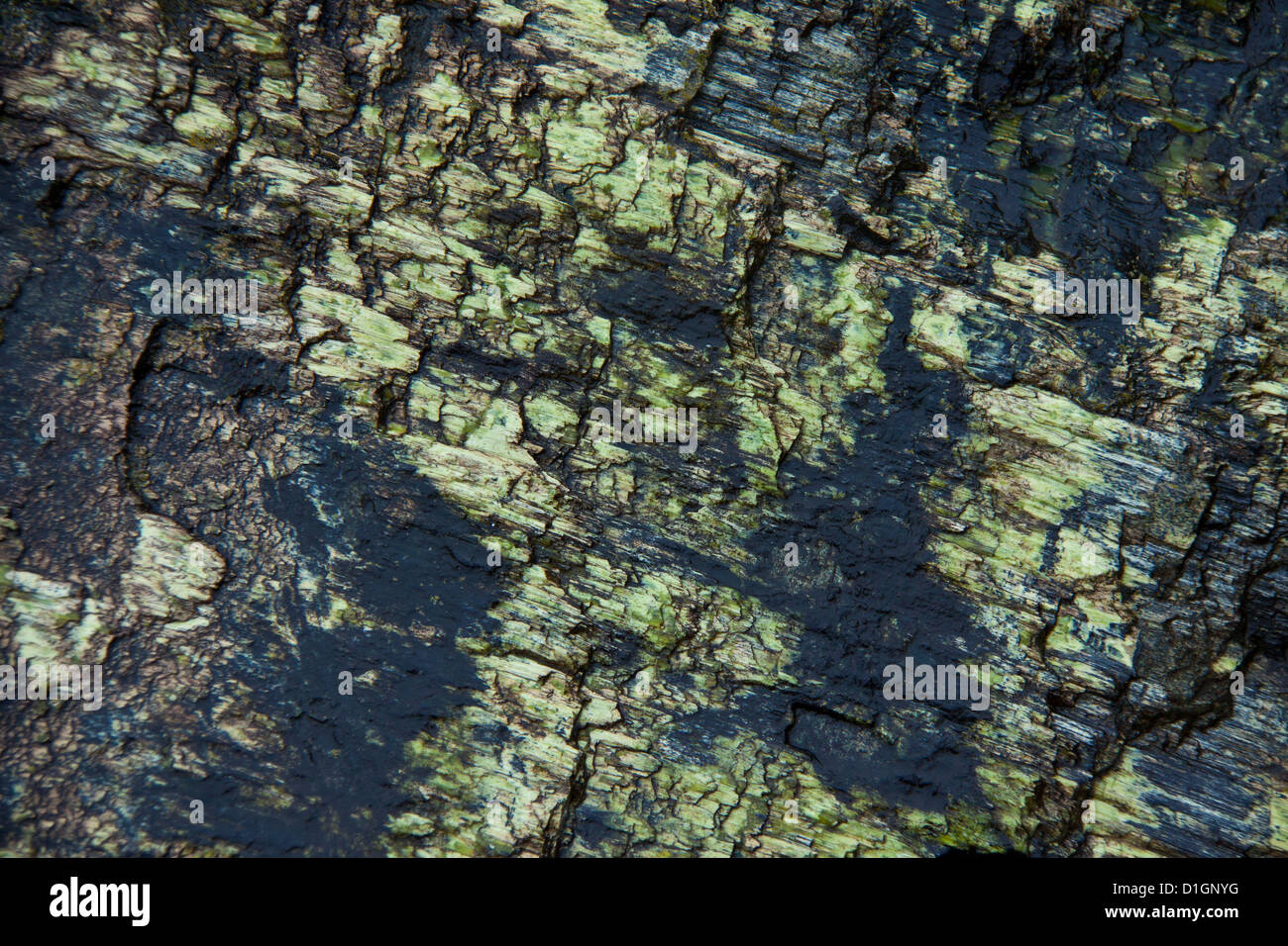 Interesting stone texture with a lot of scratches and interesting green and black colors Stock Photo