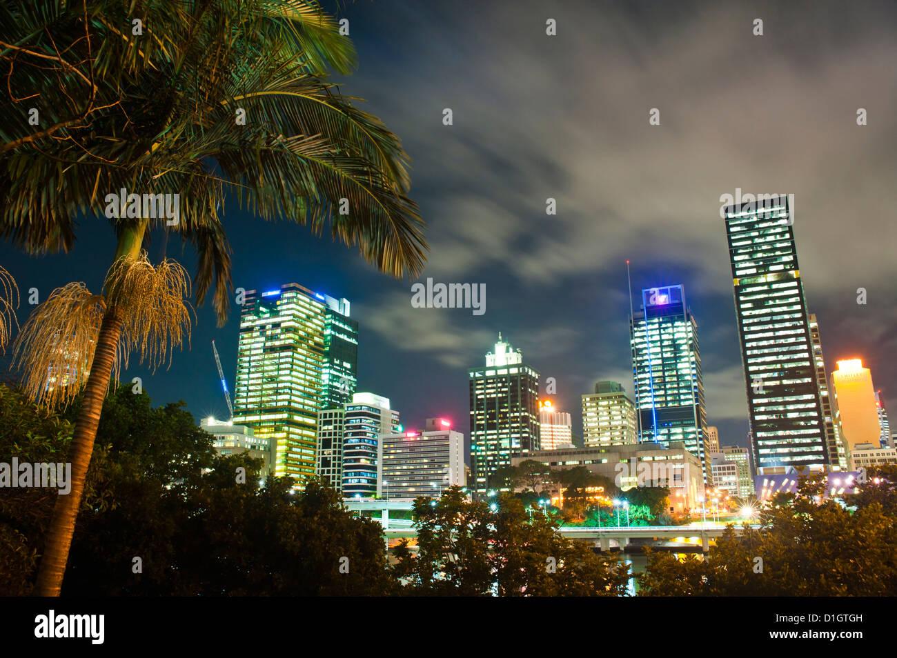 Palm tree and Brisbane skyline at night, Brisbane, Queensland, Australia, Pacific - Stock Image