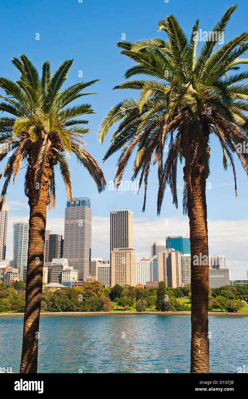 Sydney CBD and city centre from Sydney Botanic Gardens, Sydney, New South Wales, Australia, Pacific - Stock Image