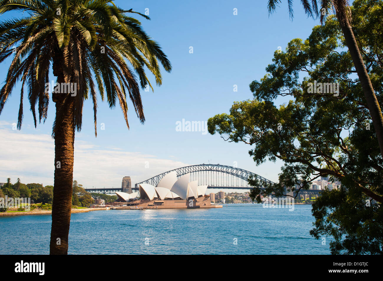 Sydney Opera House, and Sydney Harbour Bridge from the Botanic Gardens, Sydney, New South Wales, Australia, Pacific - Stock Image