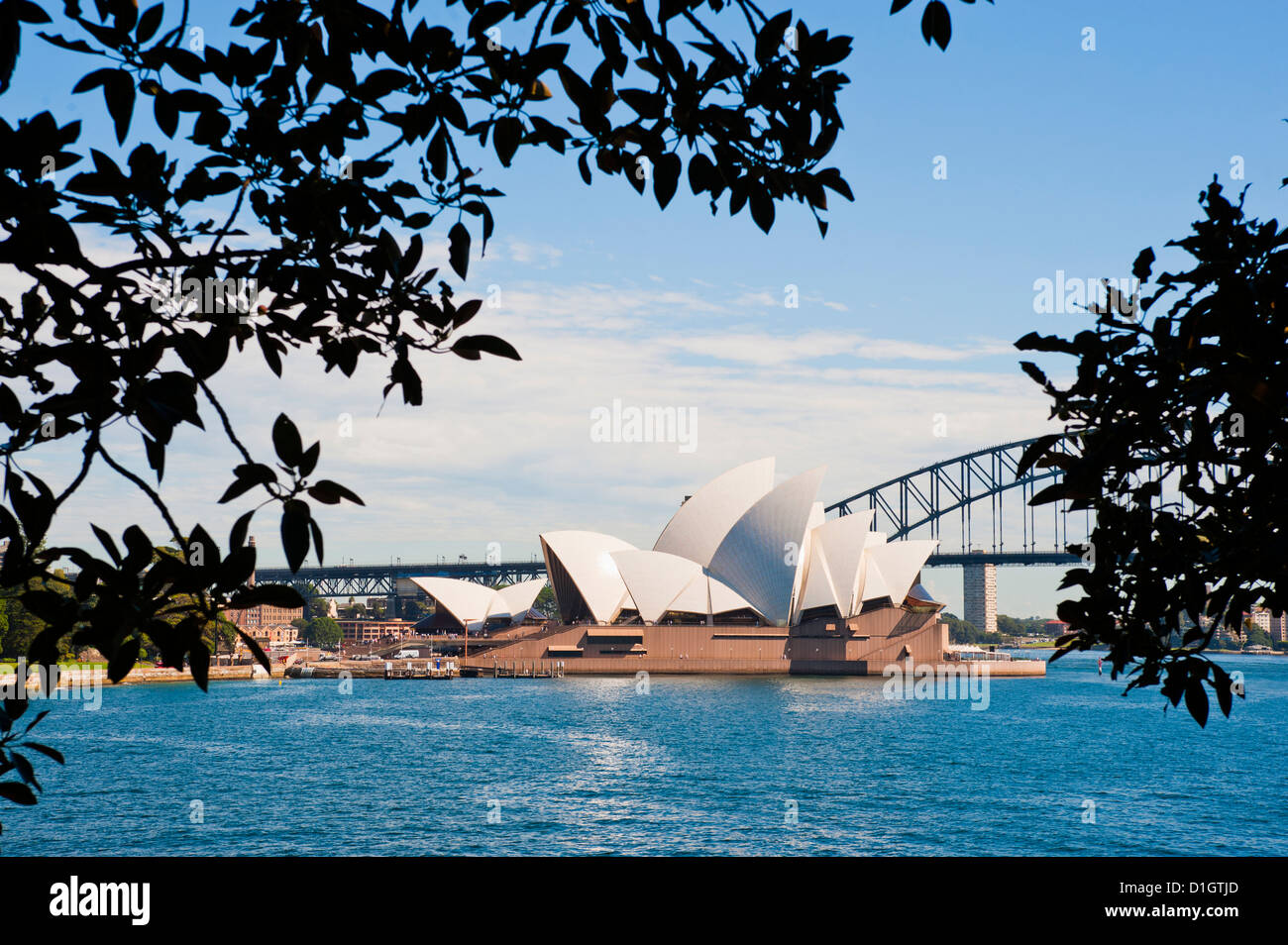 Sydney Opera House, and bridge from the Sydney Botanic Gardens, Sydney, New South Wales, Australia, Pacific - Stock Image