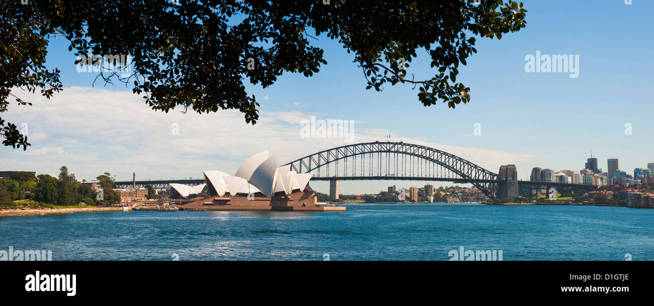 Sydney Opera House, and Sydney Harbour Bridge panoramic from Sydney Royal Botanic Gardens, Sydney, New South Wales, - Stock Image