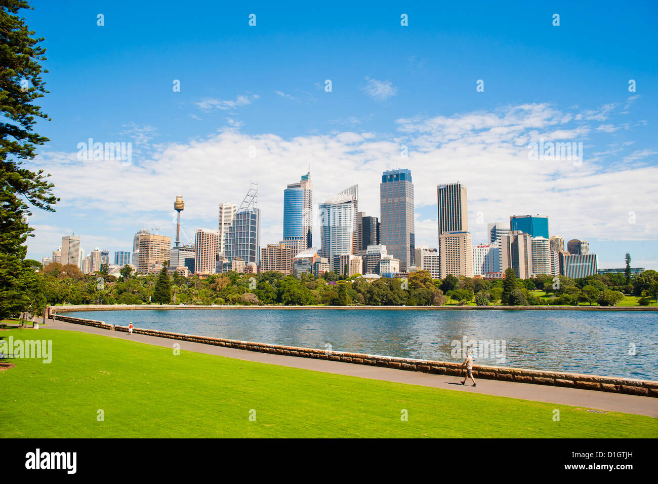 Sydney city centre and central business district (CBD) from Sydney Royal Botanic Gardens, Sydney, New South Wales, - Stock Image