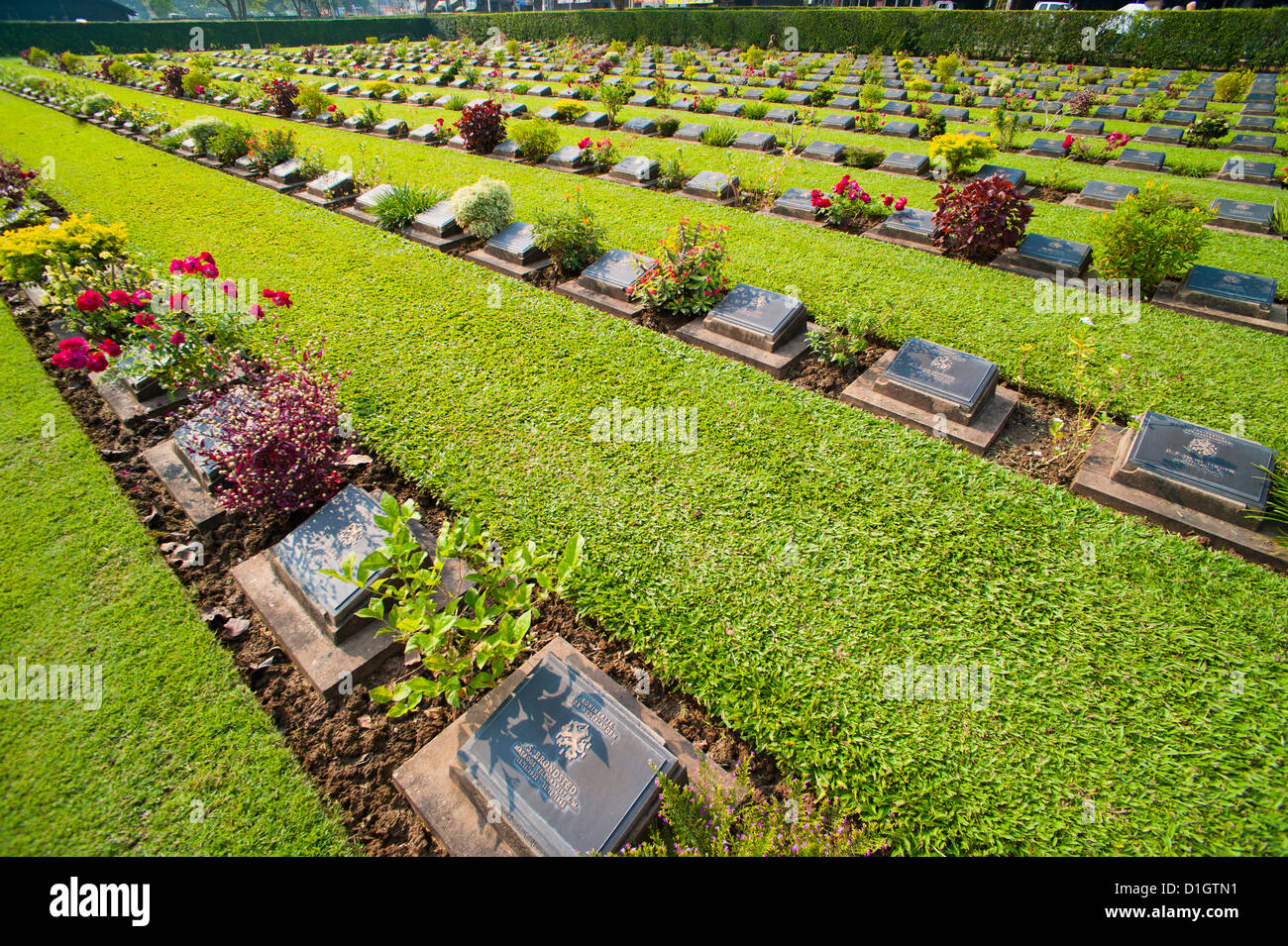 Lines of hundreds of graves at Kanchanaburi War Cemetery, Thailand, Southeast Asia, Asia - Stock Image