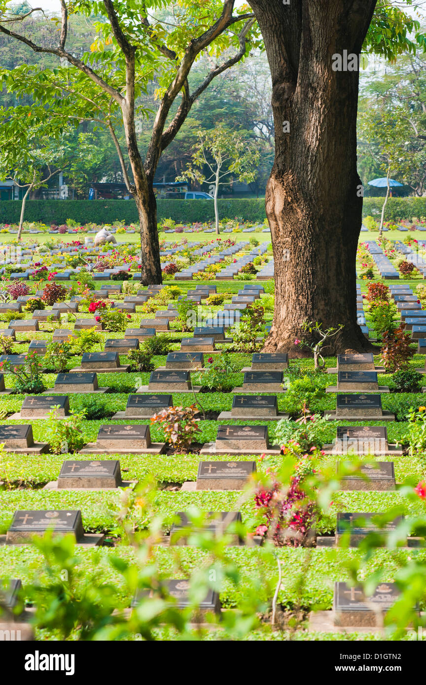 Lines of thousands of graves among trees at Kanchanaburi War Cemetery, Thailand, Southeast Asia, Asia - Stock Image