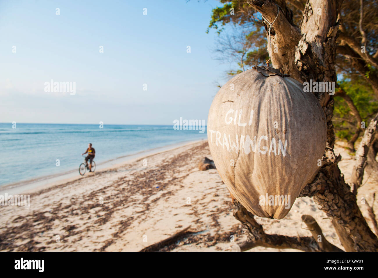 Gili Trawangan written on a coconut, Gili Islands, Indonesia, Southeast Asia, Asia - Stock Image