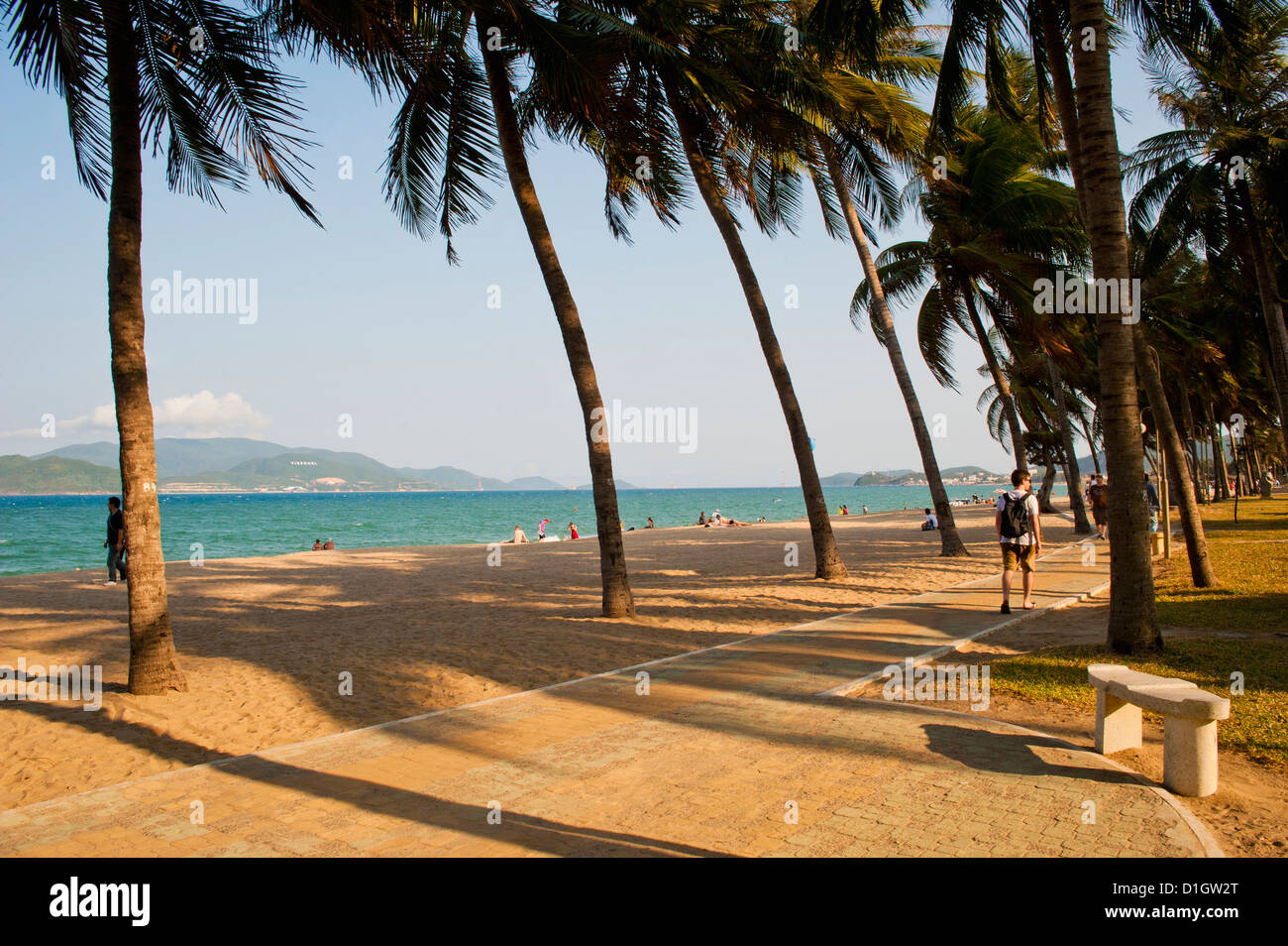 Palm trees at beautiful Nha Trang beach, Vietnam, Indochina, Southeast Asia, Asia - Stock Image