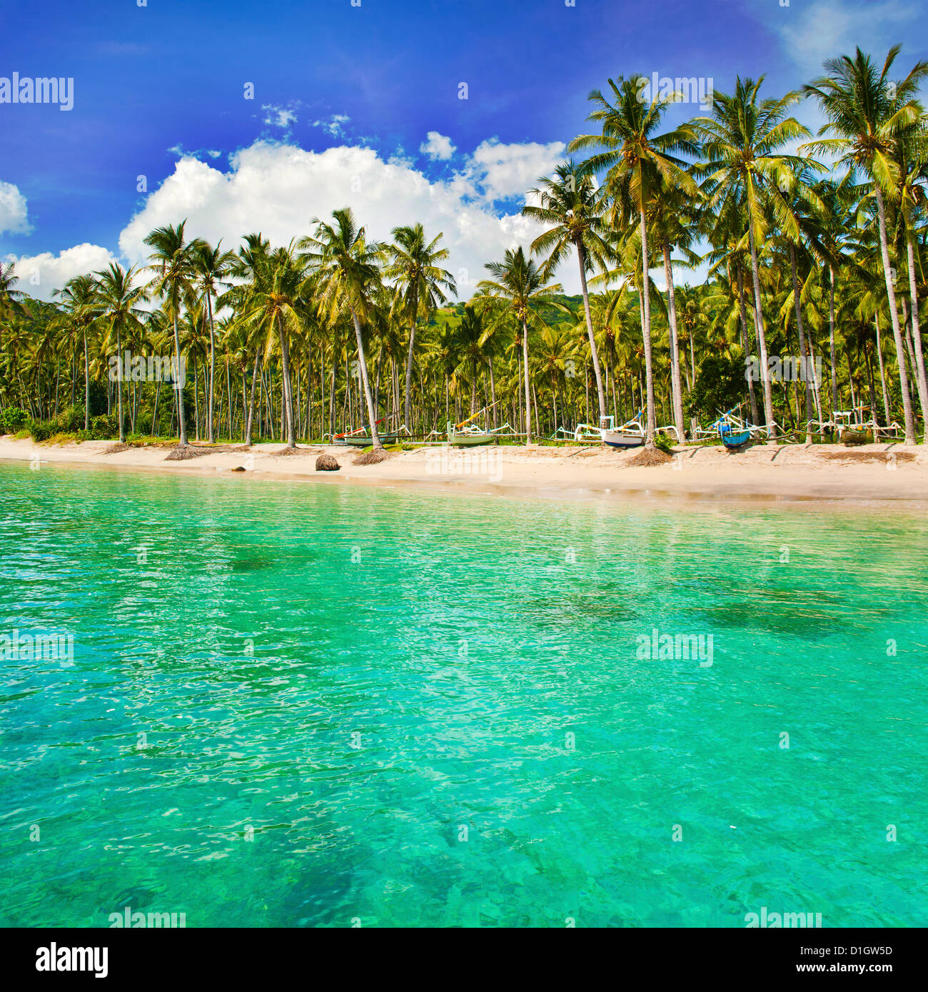 Turquoise water and palm trees lining Nippah Beach, Indonesia, Southeast Asia, Asia - Stock Image