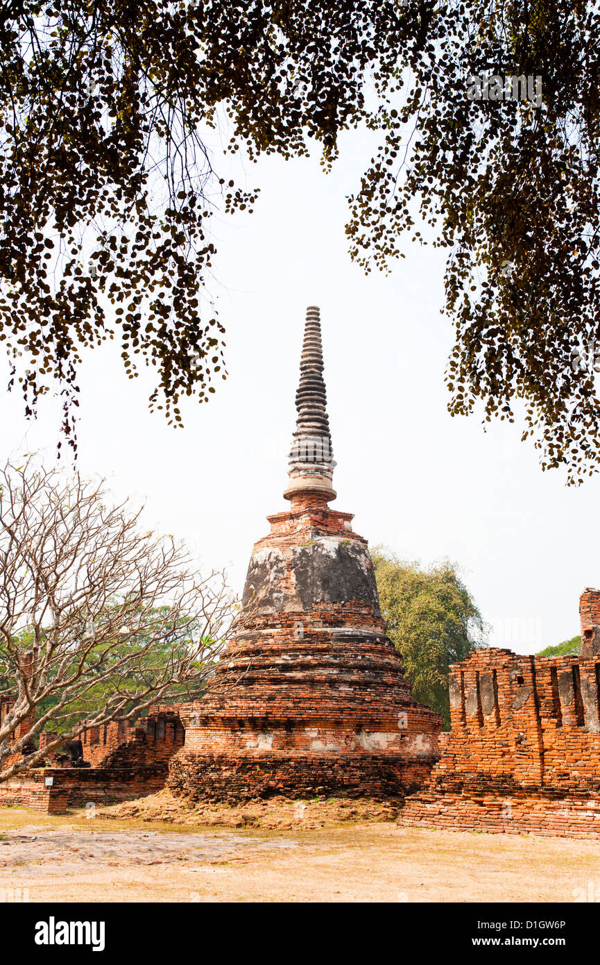 Stupa at Wat Phra Si Sanphet in the Ancient Historical Park of Ayutthaya City, Thailand, Southeast Asia, Asia - Stock Image