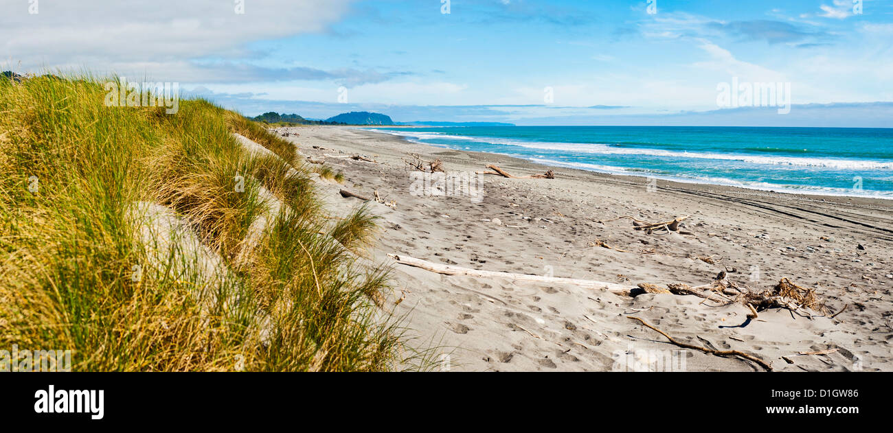 Panorama of wild and rugged Ross Beach, West Coast, South Island, New Zealand, Pacific - Stock Image