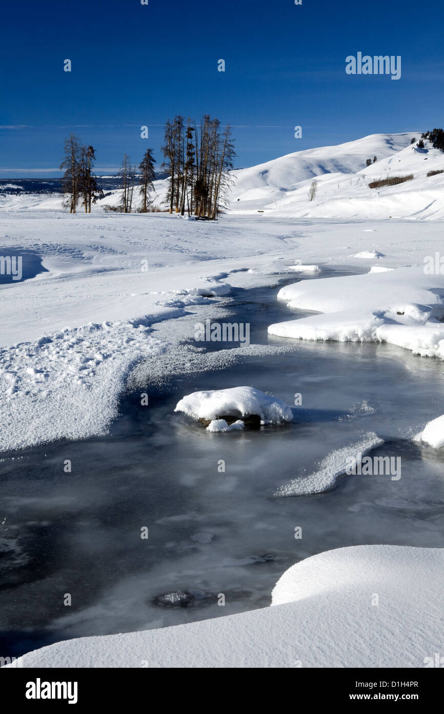 WY00176-00...WYOMING - Frozen Lamar River in the Lamar Valley of Yellowstone National Park. - Stock Image
