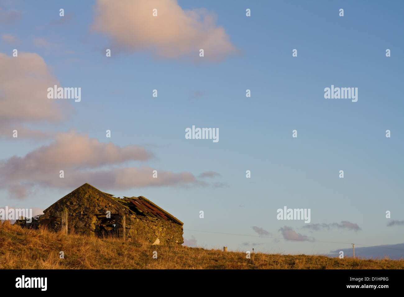 A ruined barn stands on the skyline, blue sky and fluffy white clouds above - Stock Image