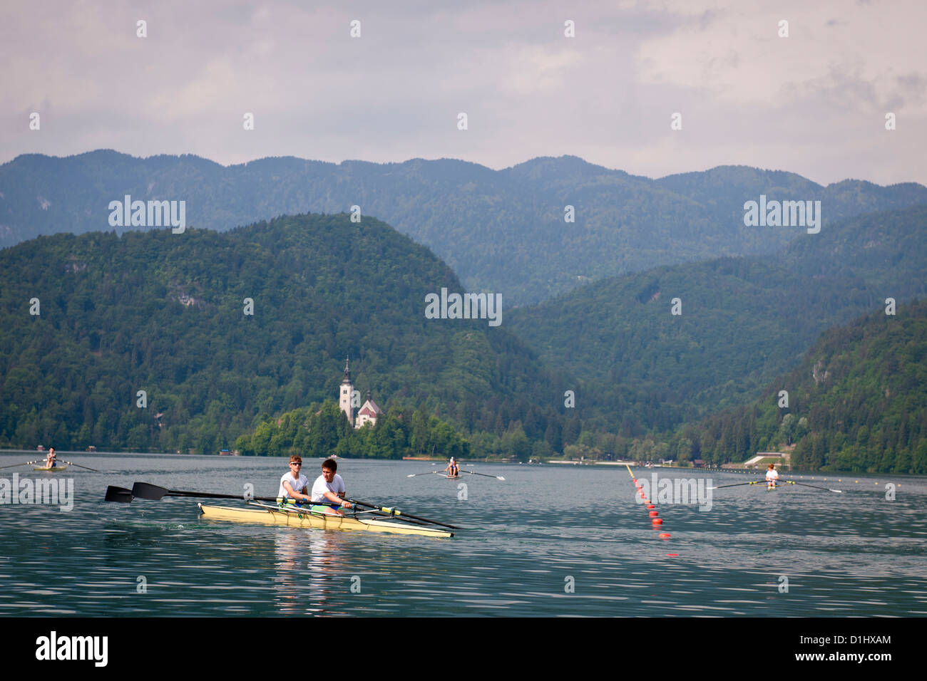 Rowers on Lake Bled, Slovenia - Stock Image